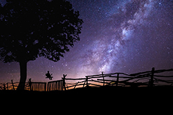 photo of child on swing looking at stars