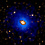 Concentrated Dark Matter at the Cores of Fossil Galaxies